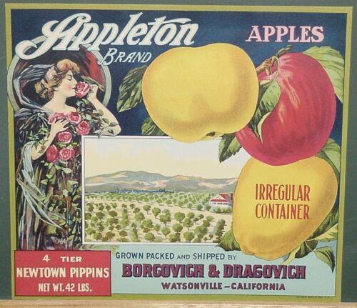 Ca. Vintage 1915-1920/'s Stone Litho Appleton Apple Crate Label  Watsonville