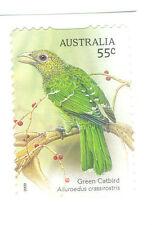 Australia- Green Catbird Songbirds self-ad mnh (3274)