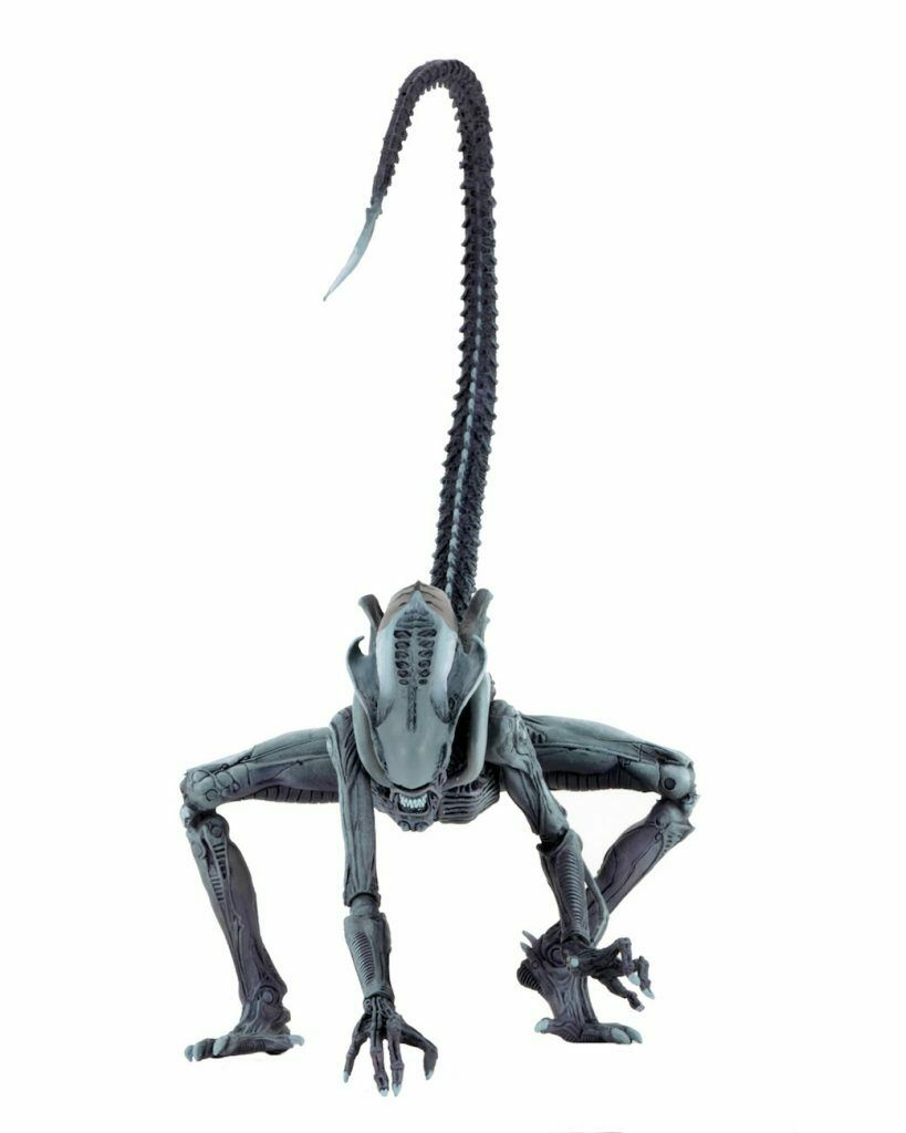 AVP Alien ARCADE Set di 3 Rasoio ARTIGLI ARTIGLI ARTIGLI Chrysalis ARACNOIDE cifra NECA in magazzino  93b268