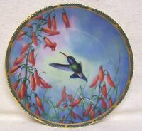 Hummingbird Collector Plate By Cyndi Nelson Broad - Billed And Penstemon 1990