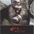 Acylum - Enemy (2009)