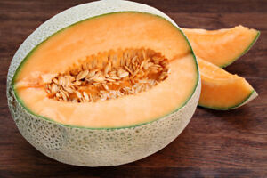 Melon Cantaloupe Orange Very Sweet 100 Seeds Seeds
