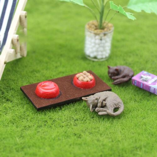 Modelo de escena Casa de Muñecas en Miniatura Accesorios De Casa De Muñecas Mini Cat//cuencas de comida de perro