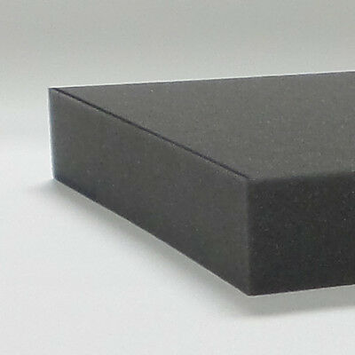 Gun Case Foam - Soy Based - Pre-cut 12 x 24 x 2 inch  - 1 piece