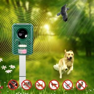 Outdoor Yard Sonic Solar Dog Cat Bird Fox Mouse Rodent