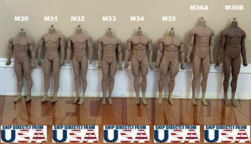 PHICEN TBLeague 1/6 Scale Steel Skeleton Male MUSCULAR SEAMLESS FIGURE Body USA