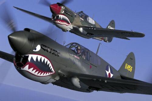 "12/"" P-40 WARHAWK FLYING TIGERS AVG HAT PATCH AVG PIN UP WW 2 PILOT USAAF USMC"