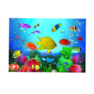 Details About 3d One Sided Aquarium Background Poster Decor Fish Tank Wallpaper Decor