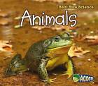 Animals by Rebecca Rissman (Paperback / softback, 2013)