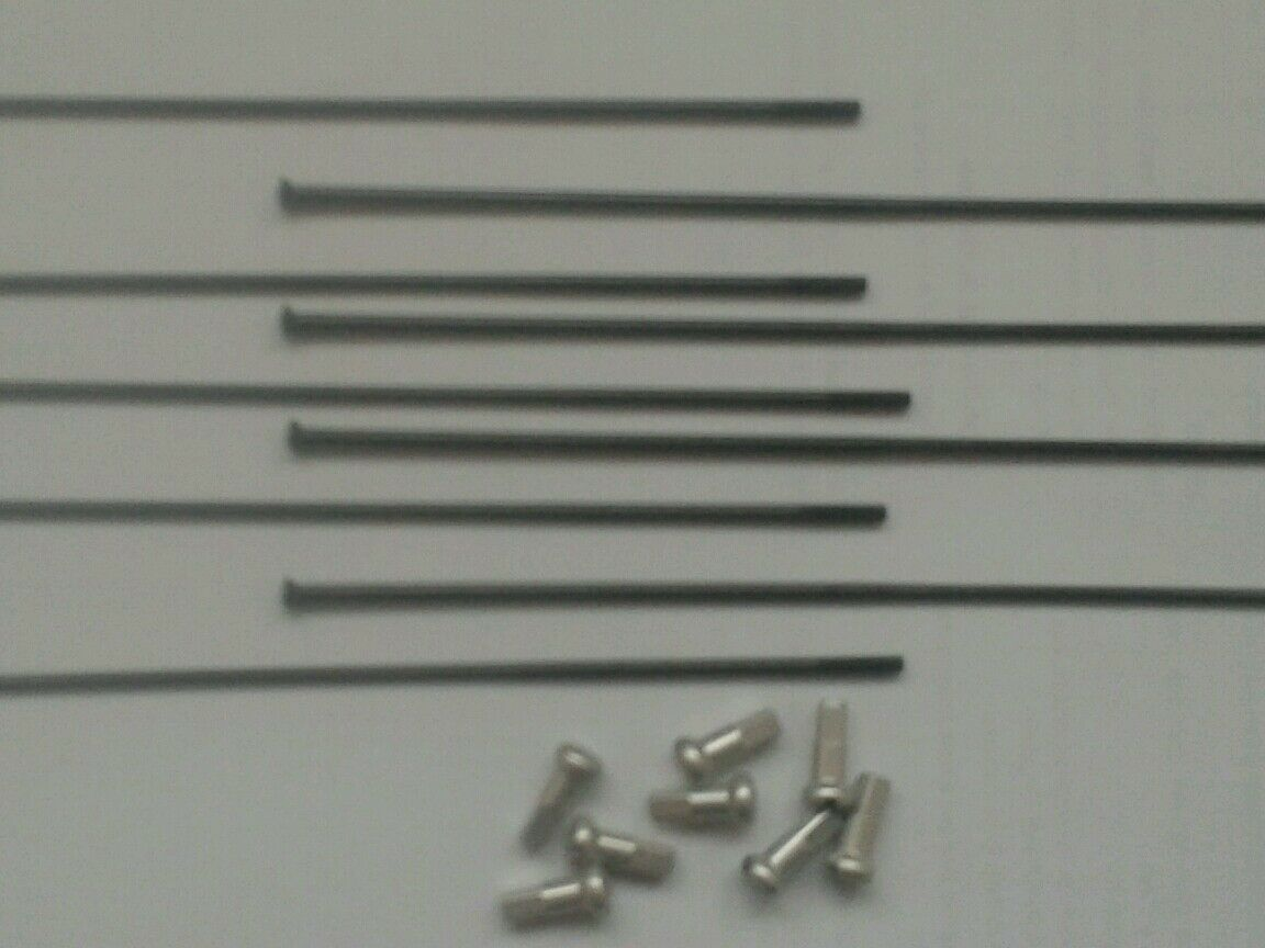 DT Swiss Competition black spokes 248-300mm one spoke one 12mm brass nipple