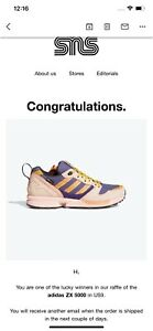 """Adidas ZX 5000 """"National Parks"""