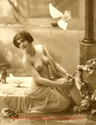 """Vintage Risque Naked Female w//Birds Nude Woman w//Pigeons 8.5x11/"""" Photo Print"""