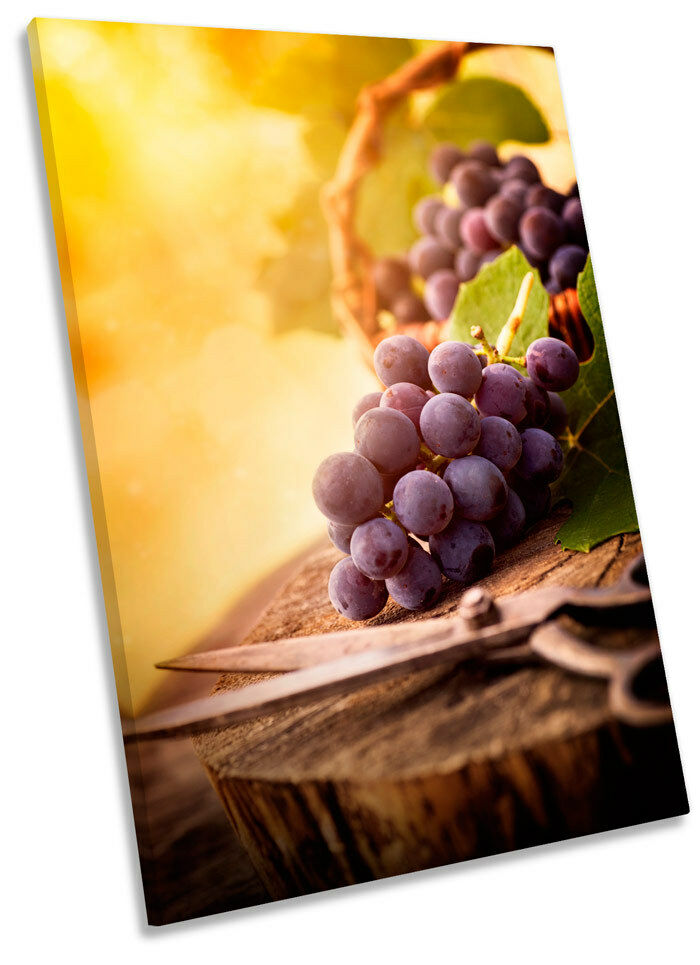 Harvest Harvest Harvest Grapes Vineyard Wine Framed CANVAS WALL ART Print Picture 43e321