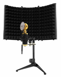 Rockville RCM02 Pro Studio Recording Condenser Microphone Mic+Shock Mount+Shield