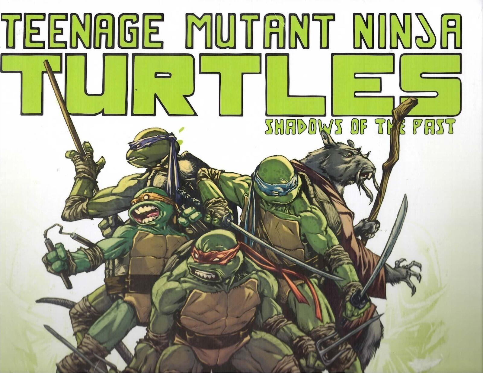 IDW GAMES Teenage Mutant Ninja Turtles Shadows of the Past boardgames New
