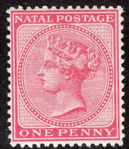 South-Africa-Natal-1874-bright-rose-1d-crown-CC-perf-14-mint-SG67