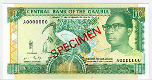 Paper Money: World Clients First Coins & Paper Money Gambia 10 Dalasis Nd1991-95 Unc P13bs Specimen
