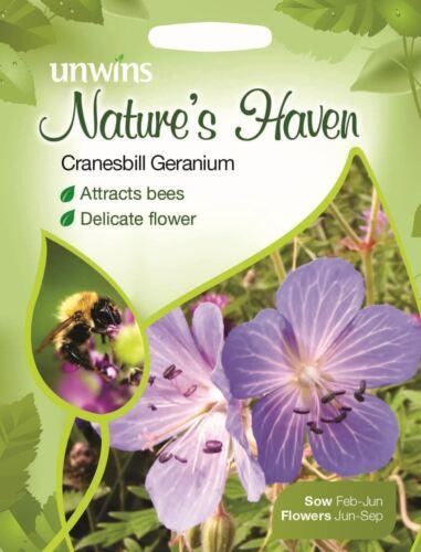 50 graines Unwins paquet illustré-Natures Haven Géranium Géranium