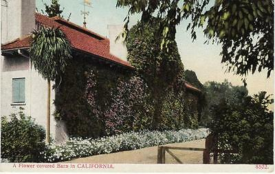 Antique Postcard C1907 20 Flower Covered Barn In