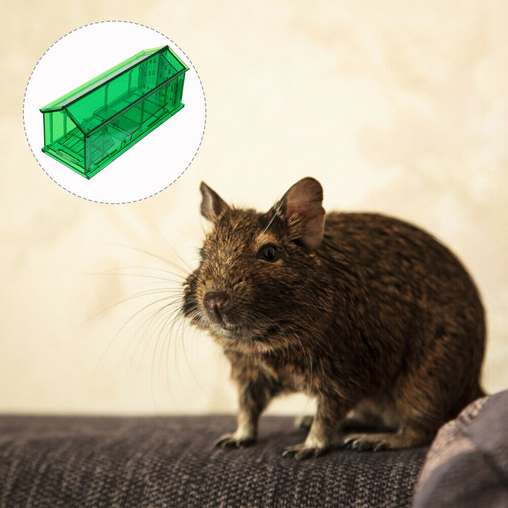 2pcs Rodent Mice Trap Rat Catcher Hamster Trap Trap for Hamster Mice Pet
