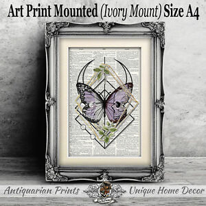 Purple-Butterfly-and-Skull-ART-PRINT-on-ANTIQUE-DICTIONARY-BOOK-PAGE-Picture
