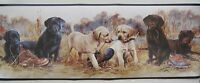 Labrador Retriever Puppies Wallpaper Border 9
