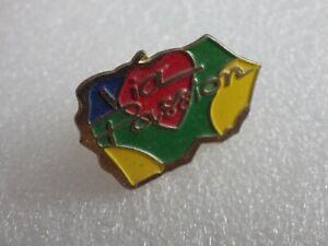 Pin-S-Vintage-Pins-Coleccionista-Publicidad-Logo-Marca-Lote-PF048