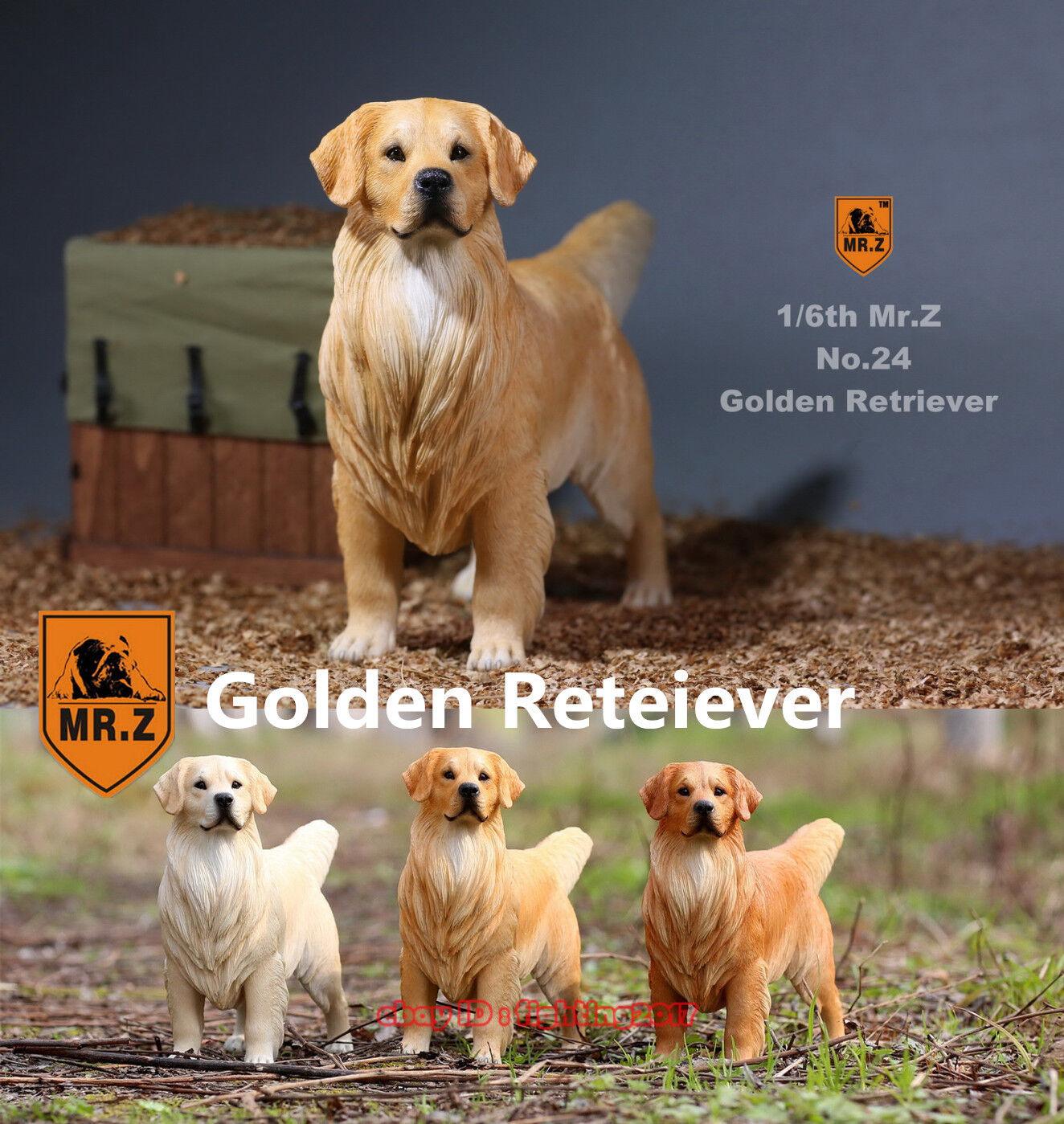 Mr.Z Animal Model 1 6 MRZ NO.24 golden Retriever Dog Figure 001-003