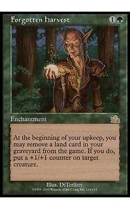 1x-Forgotten-Harvest-Prophecy-MtG-Magic-Green-Rare-1-x1-Card-Cards-MP