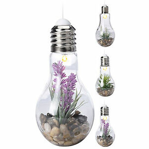 gro led dekorativ gl hbirne glas terrarium glas vase tischlampe deko pflanze ebay. Black Bedroom Furniture Sets. Home Design Ideas