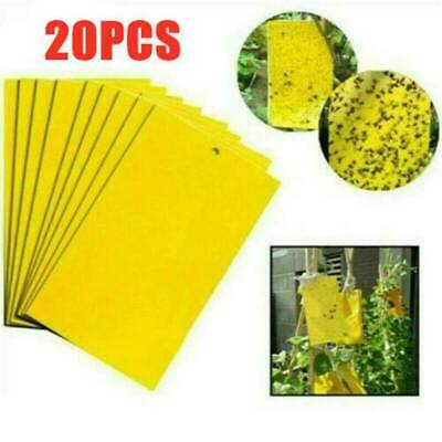 Fly Aphids Lot Wasp Insect Trap Catcher Insect Killer Yellow Sticky Glue paper