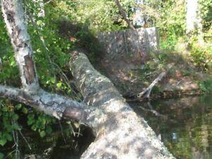 Mosey Oak Country Breakup pattern Hunting Blind deer Blind