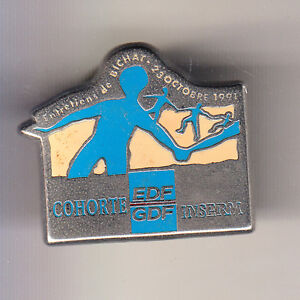RARE-PINS-PIN-039-S-ENTREPRISE-EDF-GDF-MEDECINE-INSERM-ENTRETIENS-DE-BICHAT-91-CM