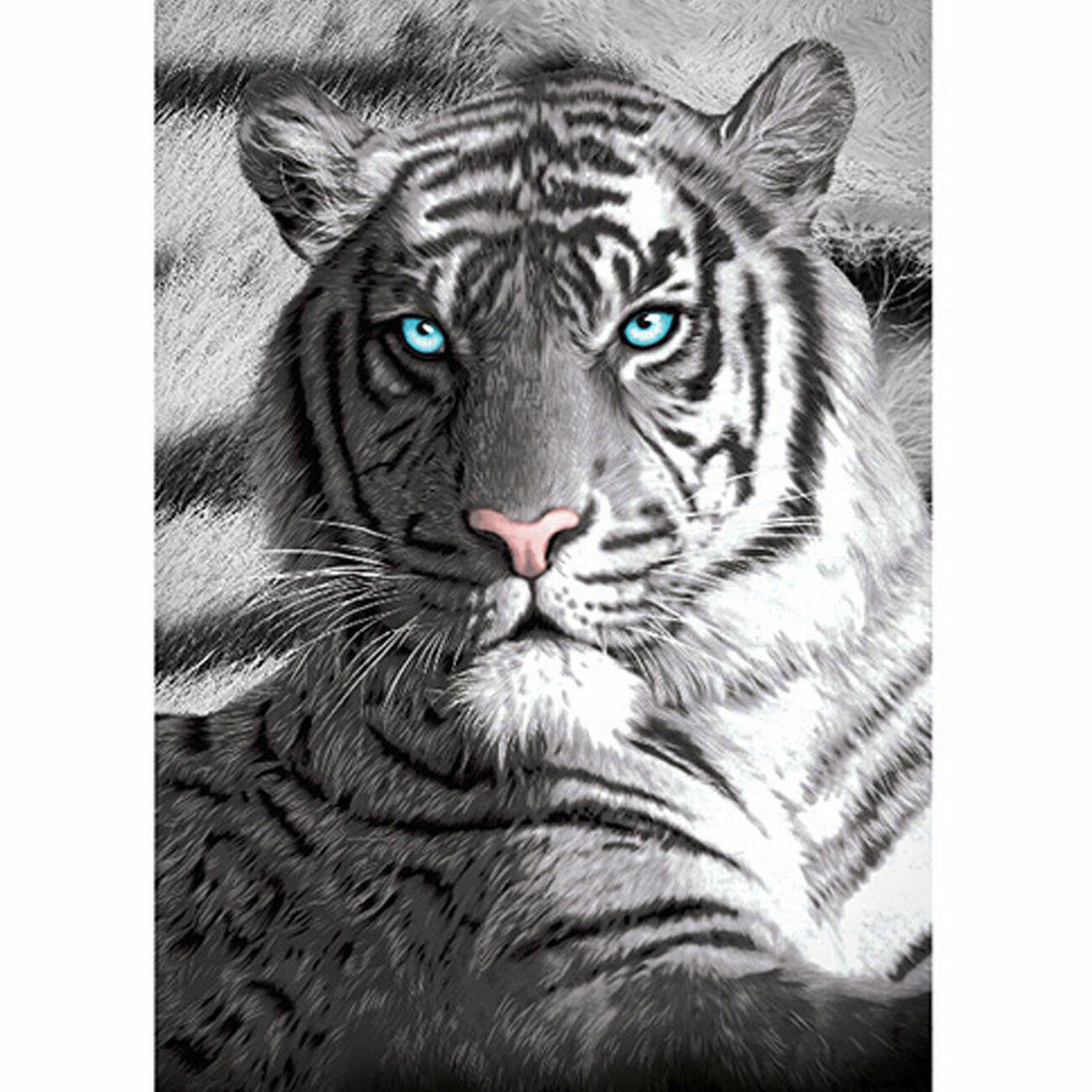 Blue Eyes Tiger Beach Pool Bath Towel | 100% Cotton | Animal Photographic print