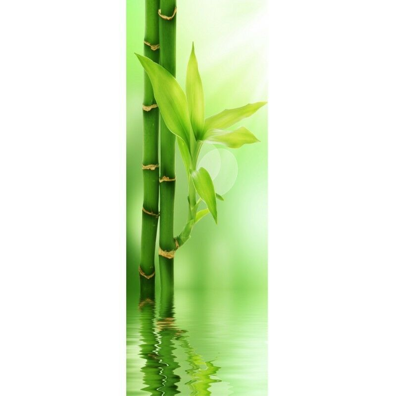 Papel Pintado Puerta Bambúes 516
