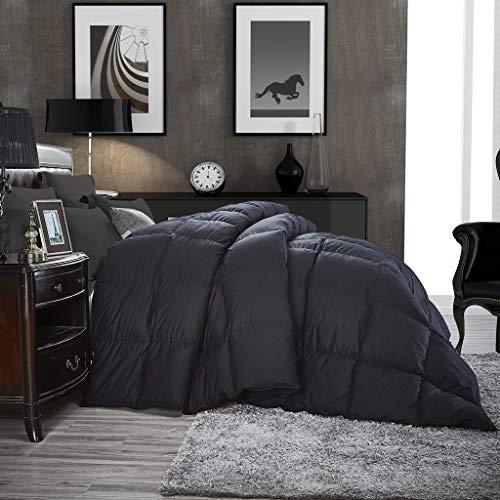 Luxurious All-Season Goose Down Comforter King Size Duvet Insert, Classic Black, for sale online ...