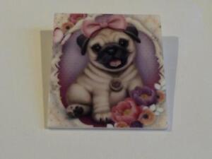 Pug Puppy Information Uk - Goldenacresdogs com