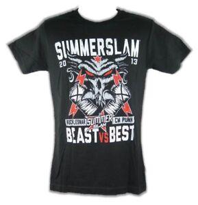 Image is loading Brock-Lesnar-CM-Punk-Summerslam-Best-vs-Beast-