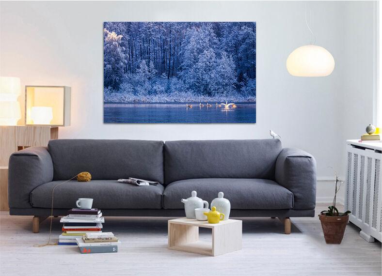 3D Abend Schwa  See Dschungel 7 Fototapeten Wandbild BildTapete AJSTORE DE Lemon