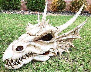 Image Is Loading Large Elder Dragon Skull Statue Legendary Erathia Fossil