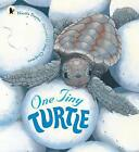 One Tiny Turtle by Nicola Davies (Paperback, 2015)