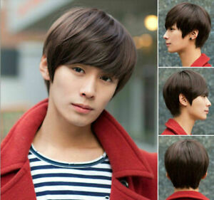 Men S Handsome Realistic Fluffy Brown Short Straight Oblique Bangs Wig Ebay