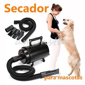 2800w Perro pet animales grooming Hair Dryer Secador De Pelo Calentador Blaster