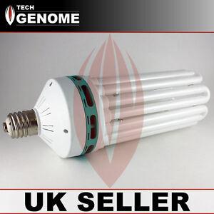 Hydroponics 300 W CFL Compact Fluorescent Ampoule rouge avec réflecteur Intérieur UK