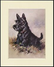 SCOTTISH TERRIER CHARMING DOG PRINT MOUNTED READY TO FRAME