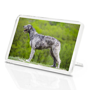 Giant-Irish-Wolfhound-Classic-Fridge-Magnet-Dog-Hound-Puppy-Cool-Gift-12572
