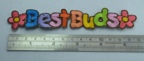 BEST BUDS FRIENDS  14cm Embroidered Iron Sew On Cloth Patch Badge  Applique