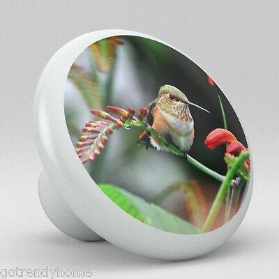 HUMMINGBIRD Bird Ceramic Knobs Kitchen Drawer Cabinet Vanity Closet Pulls 717