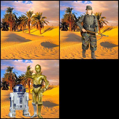 "For 1//6 DID WW2 Starwars Soldier Marvel Figures 1//6 Desert Backdrop 15""x15"""