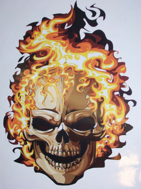 22 X 17.5 Skull flames Ghost Car Truck Decal Decals Sticker Skulls Graphic Ride